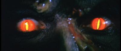 The Dark - Monster Eyes