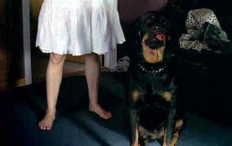 Teeth - Dog Scene