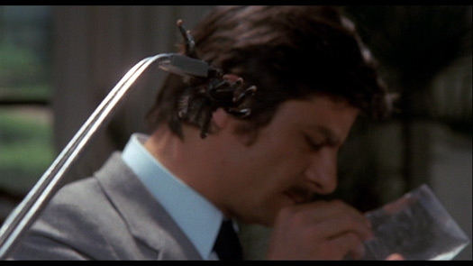 Black Belly of the Tarantula - Giancarlo Giannini