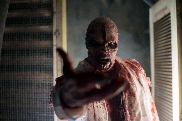 hozon-zombie